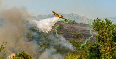 incendios forestales como prevenirlos