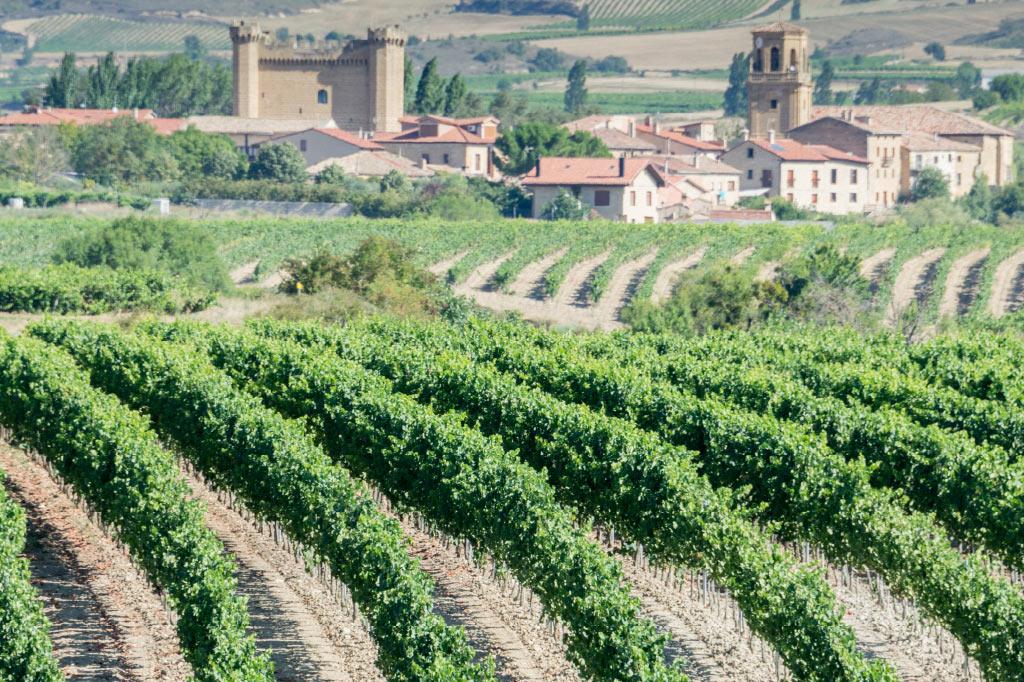 Vivienda protegida La Rioja